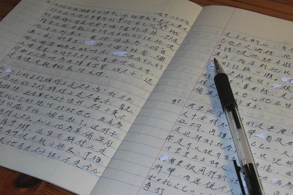 Unraveling Plagiarism in China